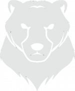 60-606875_icon-simple-bear-face-drawing.png